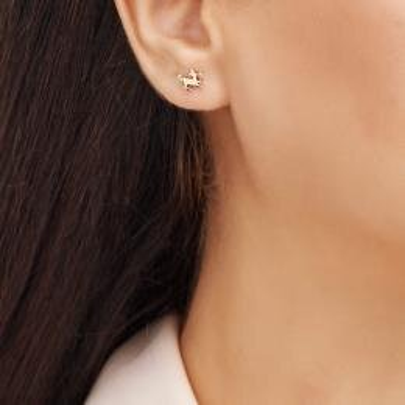 Zodiac Sign Gold Earrings-Sagittarius